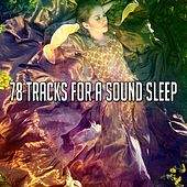 78 Tracks For A Sound Sleep by White Noise For Baby Sleep