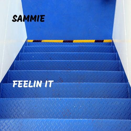 Feelin It by Sammie