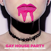 Gay House Party by Various Artists
