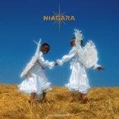 Incandescence di Niagara