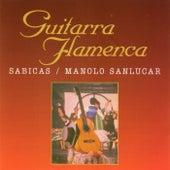 Guitarra Flamenca de Sabicas
