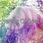 Heroes Of Sleep by Nature Sound Series