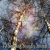75 Sleeping Soundly Sounds by White Noise For Baby Sleep