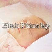 25 Tracks Of Natures Rage de Thunderstorm Sleep