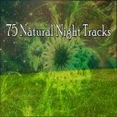 75 Natural Night Tracks de Ocean Sounds Collection (1)