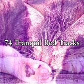 74 Tranquil Bed Tracks by S.P.A