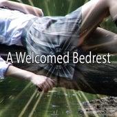 A Welcomed Bedrest de Sounds Of Nature