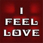 I Feel Love by Pat Hedderman