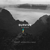Survive (Remixes) by max