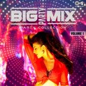 Big Party Mix: Party Collection, Vol. 1 de Various Artists