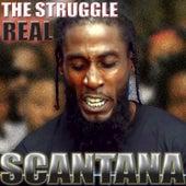 The Struggle Real by Scantana