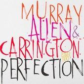 Perfection von Allen Murray