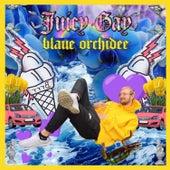 Blaue Orchidee by Juicy Gay