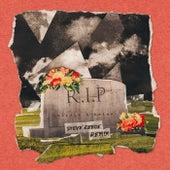 RIP (Steve Reece Remix) de Olivia O'Brien