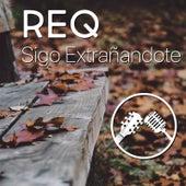 Sigo Extrañandote by Req