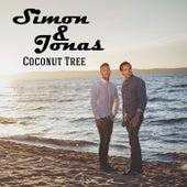 Coconut Tree by Simon