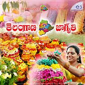 Telangana Jagruthi by Various Artists