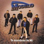 Te Acordaras De Mi by Grupo Modelo
