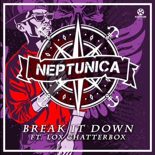 Break It Down de Neptunica