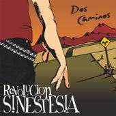 Dos Caminos by Revolución Sinestesia