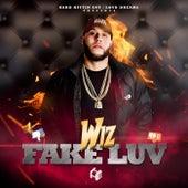 Fake Luv by Wiz