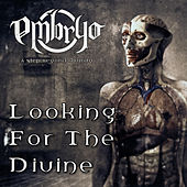 Looking for the Divine by Embryo