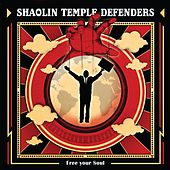 Out in the Sun by Shaolin Temple Defenders