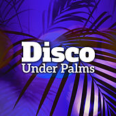 Disco Under Palms – Ibiza Lounge, Party Hits, Beach Bar Lounge, Holiday Rhythms, Dancefloor by Chillout Lounge