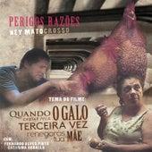 Perigos Razões von Ney Matogrosso