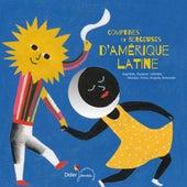 Comptines et berceuses d'Amérique latine (Argentine, Equateur, Colombie, Mexique, Pérou, Uruguay, Venezuela) by Various Artists