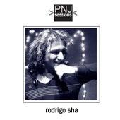PNJ Sessions: Rodrigo Sha de Rodrigo Sha