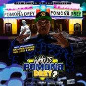 Who Is Pomona Drey? by Pomona Drey