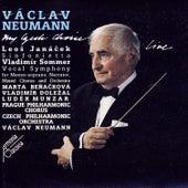 My Czech Choice by Václav Neumann