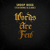 Words Are Few (feat. B Slade) de Snoop Dogg
