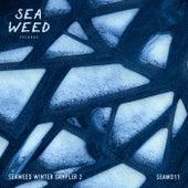 Seaweed Winter Sampler 2 - EP de Various Artists