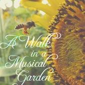 A Walk in a Musical Garden by Various Artists