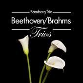 Beethoven/Brahms: Trios by Bamberg Trio