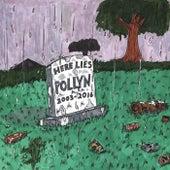 Here Lies Pollyn (2003-2016) de Pollyn