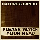 Please Watch Your Head (Instrumental) by Nature's Bandit