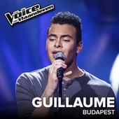 Budapest (The Voice Van Vlaanderen 2017 / Live) by Guillaume Vangu