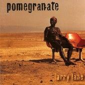 Larry Lane by Pomegranate