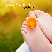 Healing & Wellness Music – Soft Songs to Relax, Massage Melodies, Chilled Sounds for Spa, New Age Music by S.P.A