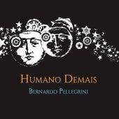 Humano Demais de Bernardo Pellegrini
