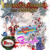 Celebrando Navidad Con Amigos by Various Artists