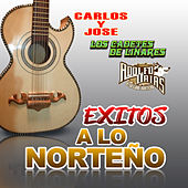 Exitos A Lo Norteno by Various Artists