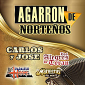 Agarron De Nortenos by Various Artists