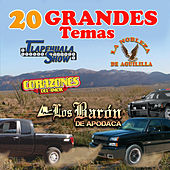 20 Grandes Temas by Various Artists