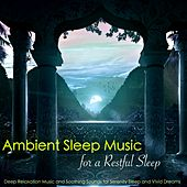 Ambient Sleep Music for a Restful Sleep – Deep Relaxation Music and Soothing Sounds for Serenity Sleep and Vivid Dreams de Various Artists
