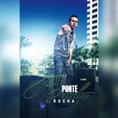 Ponte Ready by Rocha