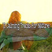 72 Calming Tracks For Nature von Entspannungsmusik